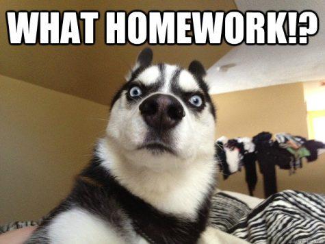 Homework Avoidance: The Top Ten Worst Excuses