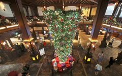 What's Up with Upside-Down Christmas Trees?
