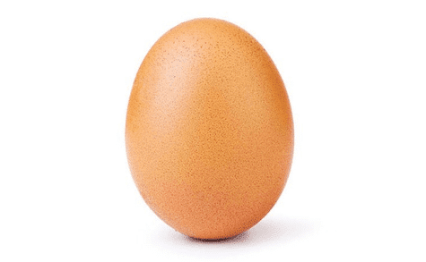 Egg Breaks World Record: No Poaching Permitted