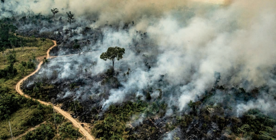 Amazon+Fires+and+Climate+Change