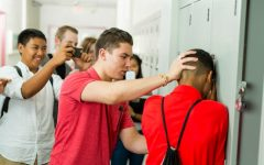 The Causes and Effects of School Violence